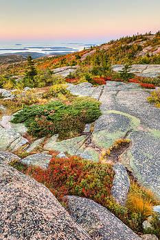 Acadia National Park Photograph - Cadillac Mountain Landscape by Bill Swindaman