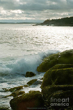 Acadia Shores of the Atlantic by Gerald MacLennon