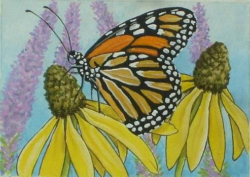 ACEO Monarch on wild grey headed Coneflower by Debrah Nelson
