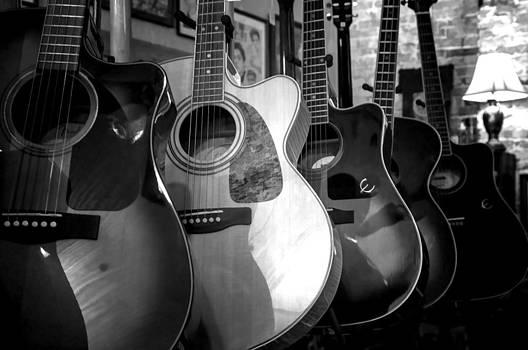 Lynn Palmer - Acoustic Guitars