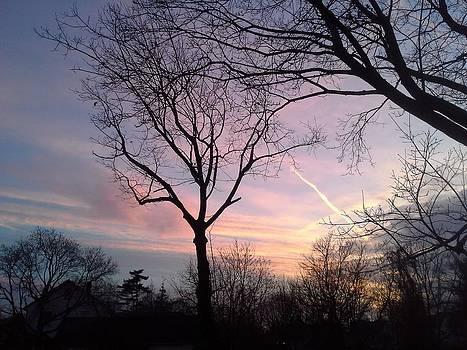 Across The Blazing Sky by Brenda Chapman