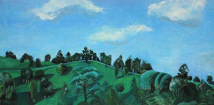 Across the Waterhole Maleny Queensland Australia Painted from Life View from My Window and the Day A by Cynthia Van Leeuwen