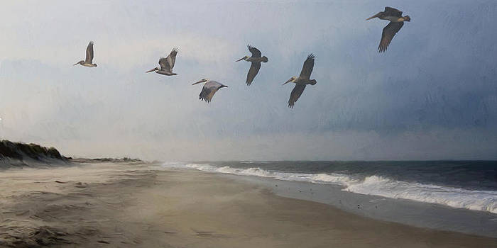 Adagio For Waves And Seabirds by Forest Stiltner
