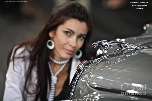 Adel Black Jagger Love classic Oldies Jaguar. by  Andrzej Goszcz