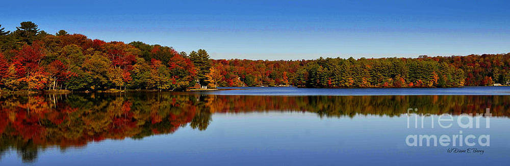 Adirondack October by Diane E Berry