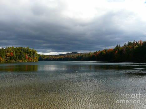 Adirondack Serenity by Avis  Noelle