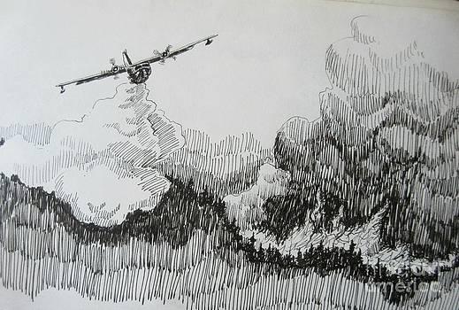 John Malone - Aerial Firefighting