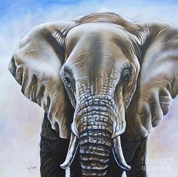 African Elephant by Ilse Kleyn