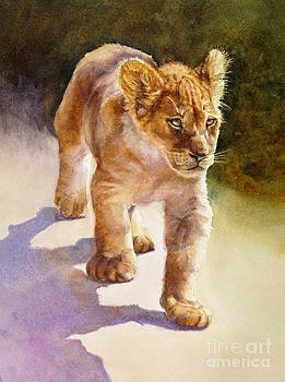 African Lion Cub by Bonnie Rinier