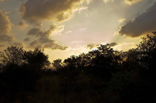 African Sunset #2 by John Stuart Webbstock
