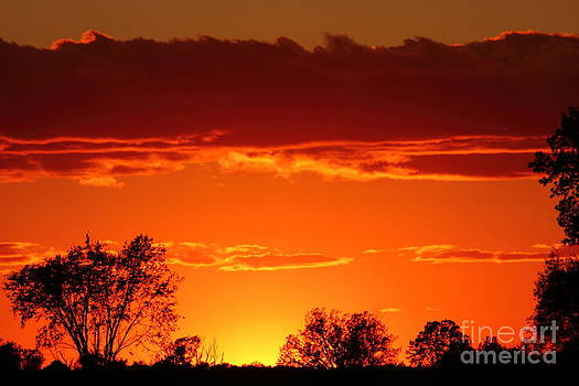 African Sunset in Ottawa by Deanna Wright