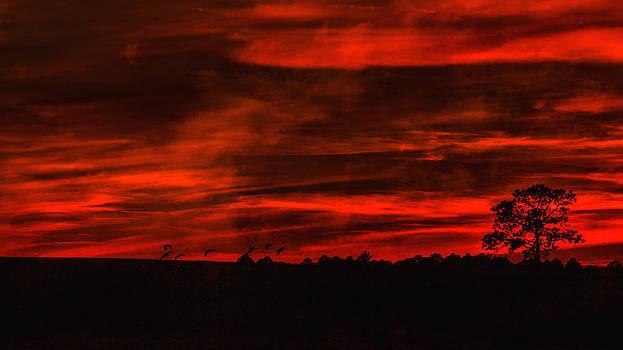 Dave Bosse - After Sunset Sky