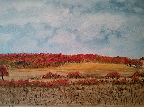 After The Harvest by B Kathleen Fannin