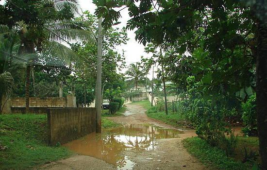 After the rain by K Walker