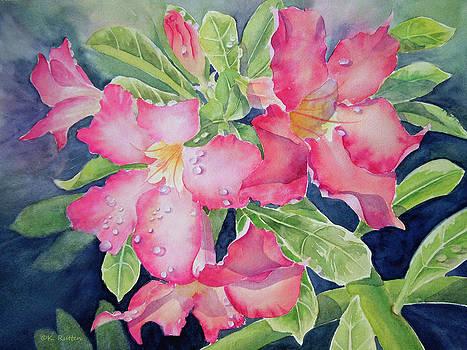 After The Rain by Kathleen Rutten