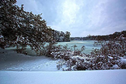 Regina  Williams  - After Winter Evening Snow Storm