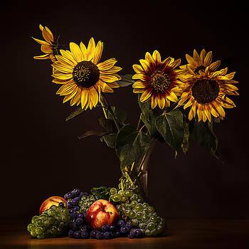 Afternoon Delight by Vjekoslav Antic