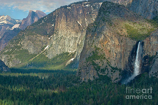 Sandra Bronstein - Afternoon in Yosemite