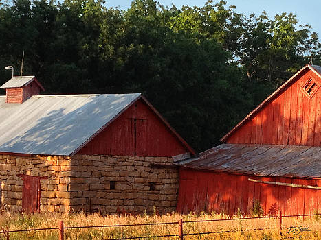 Afternoon Sun on the Old Red Barn by Rod Seel