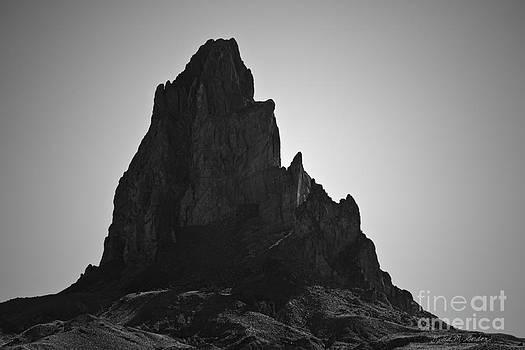 David Gordon - Agathla Peak AZ I BW