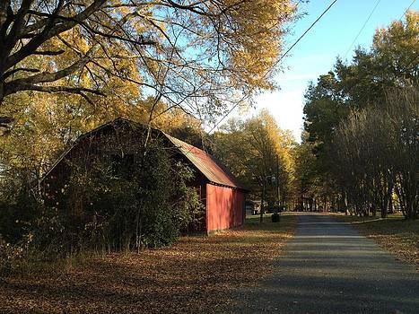 Alabama Red by Don F  Bradford