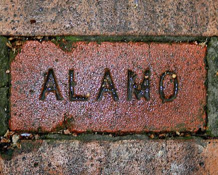 Kathy Peltomaa Lewis - Alamo Brick Walkway