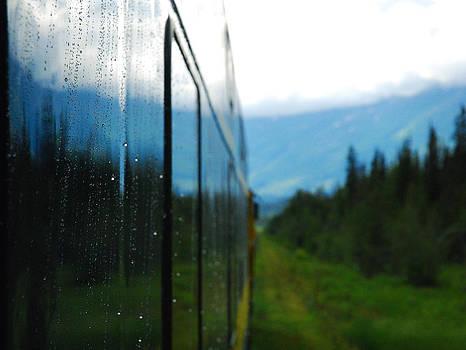 Alaska in Perspective by Preston Zeller
