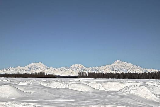 Alaska Range by Donna Quante