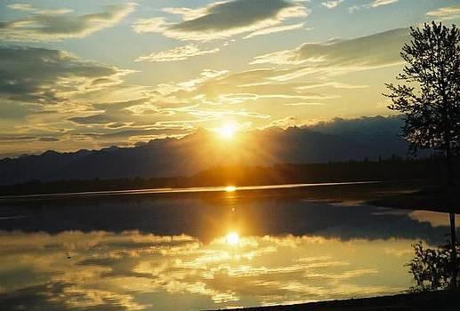 Alaska Range Reflection by Ginger Bear