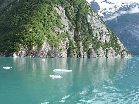 Alaska Teal Tranquility by Donna Jackson