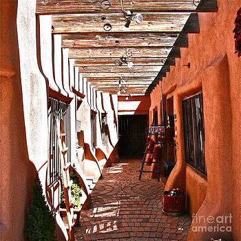 Albuquerque by Ray  Petersen