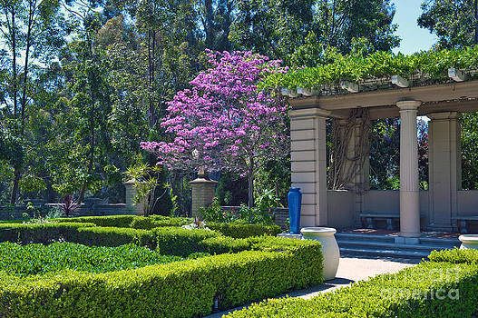 David  Zanzinger - Alcazar Garden Balboa Park San Diego Ca