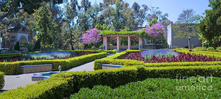 David  Zanzinger - Alcazar Garden vibrant color display Balboa Park