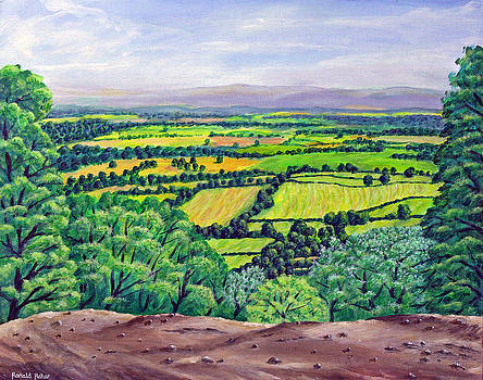 Alderley Edge - Cheshire by Ronald Haber