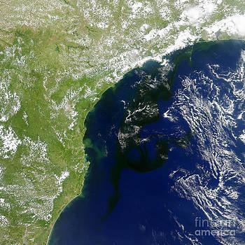 Science Source - Algal Bloom Off Brazil Coast