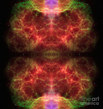 Alien Brain abstract Space Art by Animated Sentiments