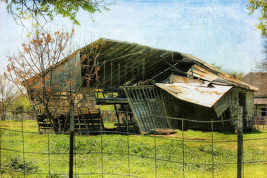 Almost Gone by Joan Bertucci