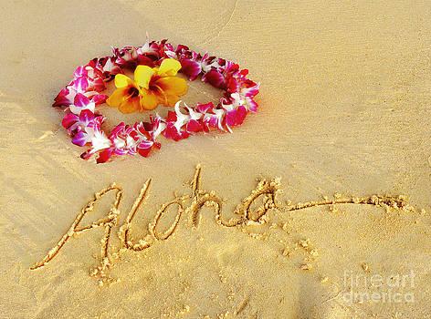 Aloha Lei by Kristine Merc