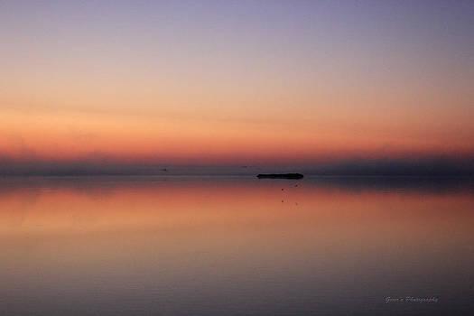 Alone In The Mist by Robert Geier