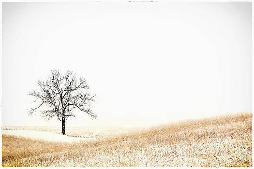 Alone by Michael Huddleston