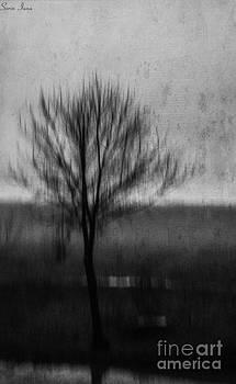 Alone by Sorin Iana