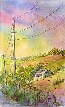 Along Craynes Run Road by Leslie Fehling