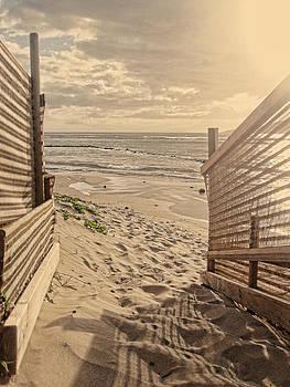 Marilyn Wilson - Along the Beach