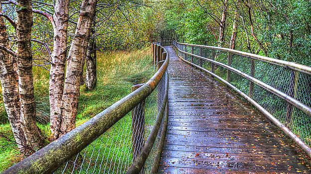 Along the Boardwalk by Kim Shatwell-Irishphotographer