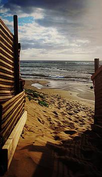 Marilyn Wilson - Along the Dunes