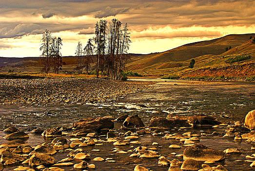 Marty Koch - Along the Larmar River