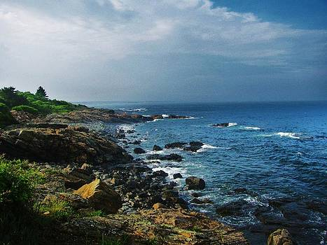 Along The Marginal Way by Diane Valliere
