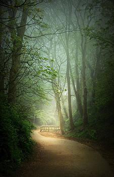 Svetlana Sewell - Along the Path