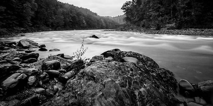Along the River by Adam Caron