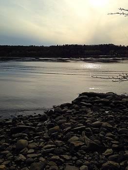 Alongside the Hudson by Dayna Winters